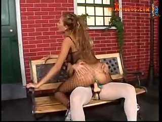 Chicks in pantyhose get anal and DP