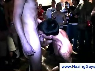 College gay blowing cock in public