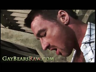 Cock sucking Raw Bears outside