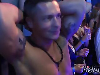 Sexy dames pleasure boners in an orgy
