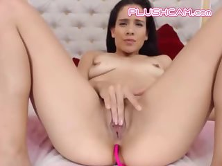 Pink PLUSHCAM Lush Lovense Toys Are Taking Over Her Turn Them ON NOW
