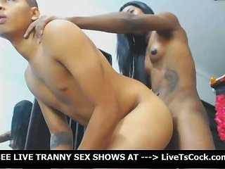 Big Cock Ebony Tranny Dogstyle Fucks Neighbor