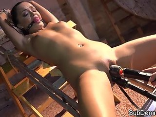 Gagged beauty toyed while restrained