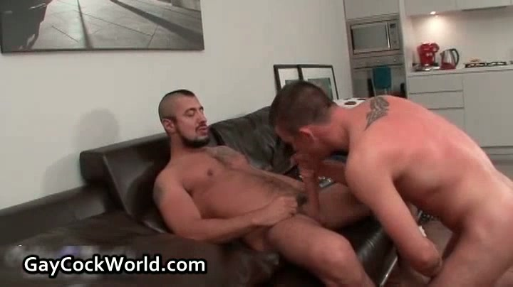 Alex Delarge And Taylor Murphy In Horny Gay Porn